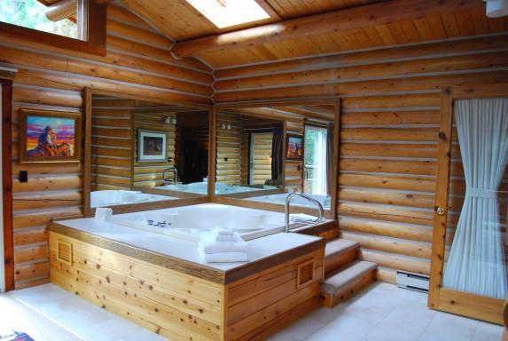 Castle Rock Cabin - Sunroom with Whirlpool Tub