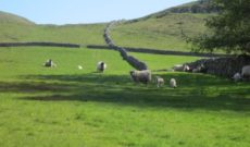 Travel England: Hiking the Yorkshire Dales with Walking Women Tours