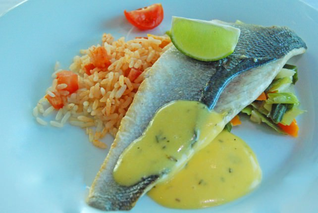 Seared Filet of Sea Bass - Entree