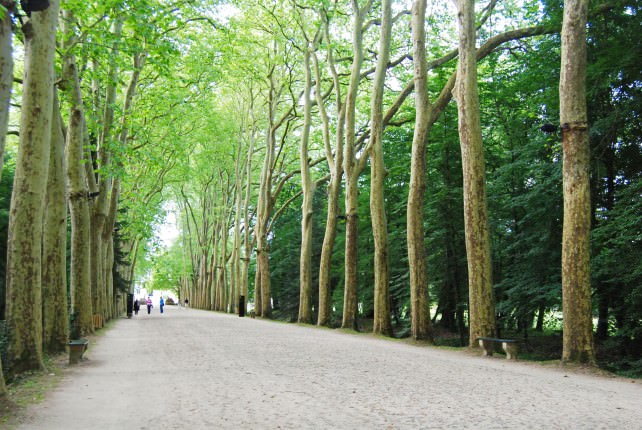 Walking to Chateau Chenonceau