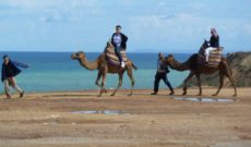 Insight Vacations Review – Treasures of Spain, Portugal & Morocco – Tangier to Fes
