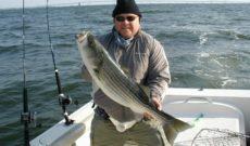 Rock Fishing in Chesapeake Bay