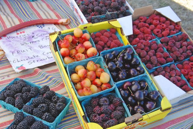 Fresh Cherries and Berries on Lopez Island