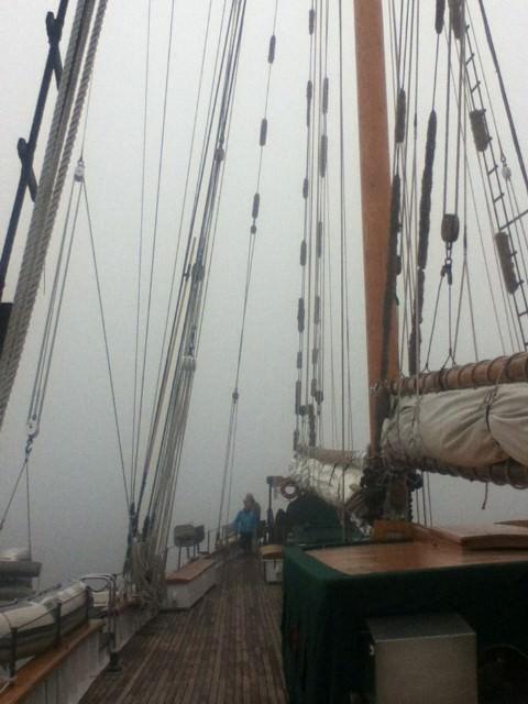 Foggy Morning in the San Juan Islands