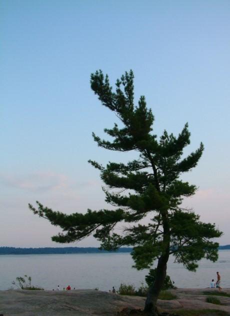 In Killbear Provincial Park, Ontario