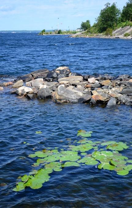 Parry Sound Shoreline
