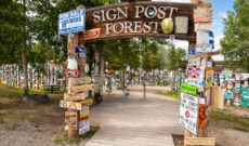 Wish You Were Here – Postcard From Watson Lake, Yukon