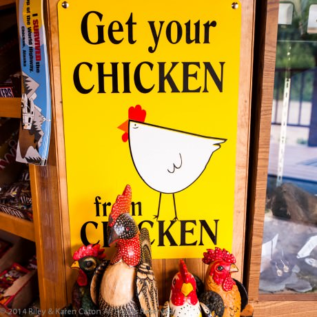 In the gift shop at Chicken Gold Camp & Outpost