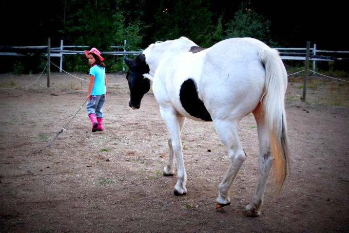 Jada the Horse Whisperer