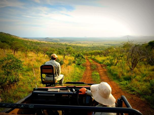 Big 5 Safari at Phinda Private Game Reserve