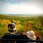andBeyond Big 5 Safari at Phinda Private Game Reserve