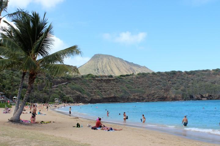 The stunning beach area