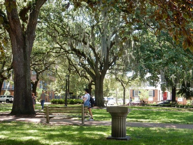 Fall In Love With Savannah's Squares