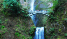 Visiting Multnomah Falls in Oregon