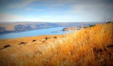 Scenery along the Columbia River