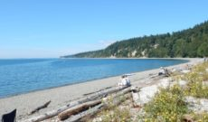 Camano Island: Bridge Over to a Pacific Northwest Island Experience