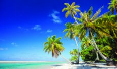Cruise News: Lindblad Expeditions-National Geographic Voyages to South Pacific