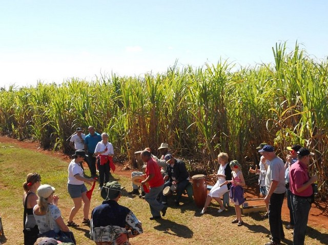Cuba Sugar Cane Field Tour