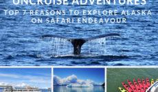 Top 7 Reasons To Explore Alaska On UnCruise Adventures Safari Endeavour