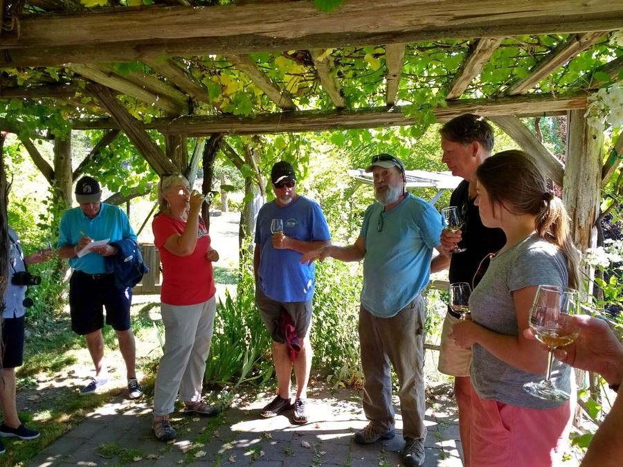 Lopez Island Vineyards