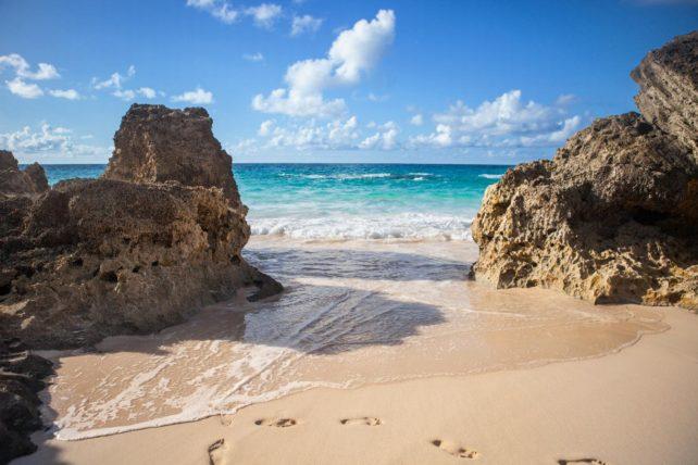 Pink Sand Beaches in Bermuda